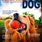 Gulf Coast magazine